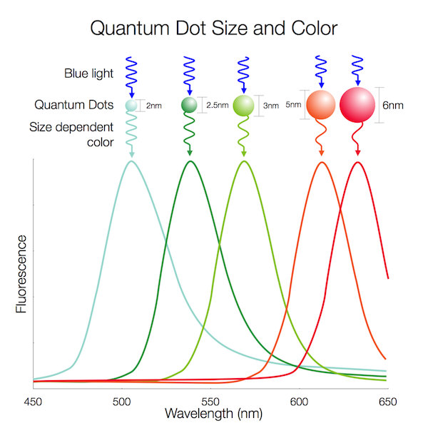 quantum dots display 2.jpg