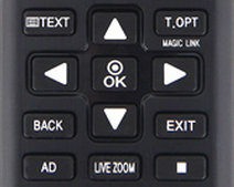 Magic Link Live Zoom Buttons.jpg